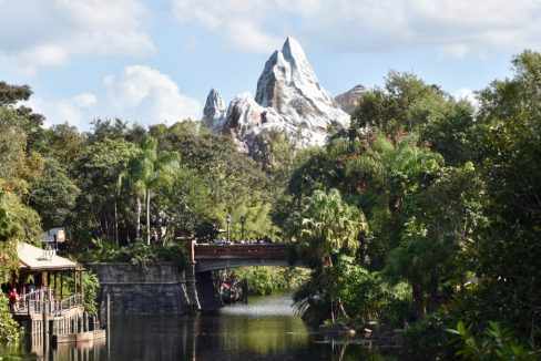 Animal_Kingdom_Disney_Orlando_Florida_terrenosnaflorida-com_shutterstock_754083106_1200x680