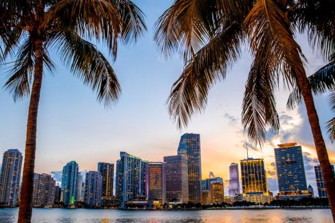 Miami_Florida_skyline_and_bay_at_sunset_seen_through_palm_trees_terrenosnaflorida-com_shutterstock_428711317_1200x680