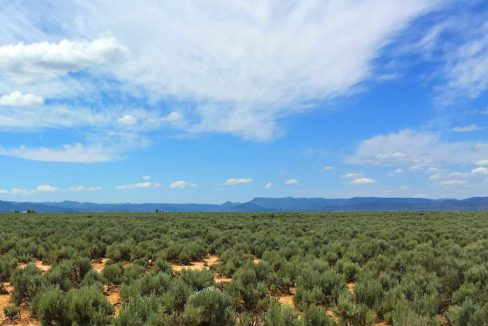 1.14 Acres em Garden Valley Ranchos - Utah 02